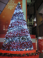 Tree_namba