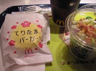 Mc_spring_1