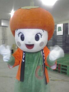 柿の里祭り 2008