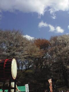 丸山公園桜祭り