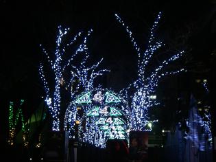 Mbs2010