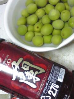 梅酒好き☆